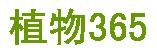植物365